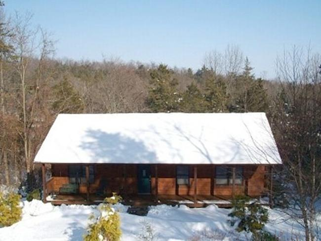 Winter at Bear Lodge - Massanutten Charming Log Home w/hot tub - Massanutten - rentals