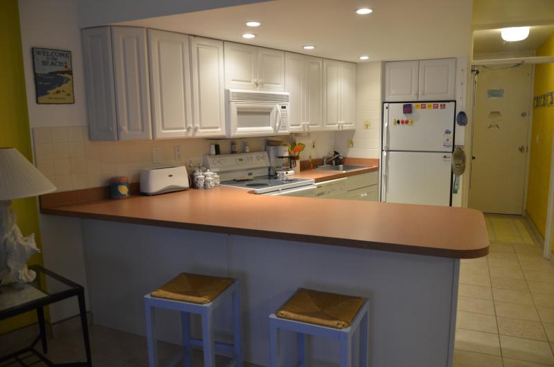 Kitchen View - Beautiful Oceanfront Condo - Ocean City - rentals