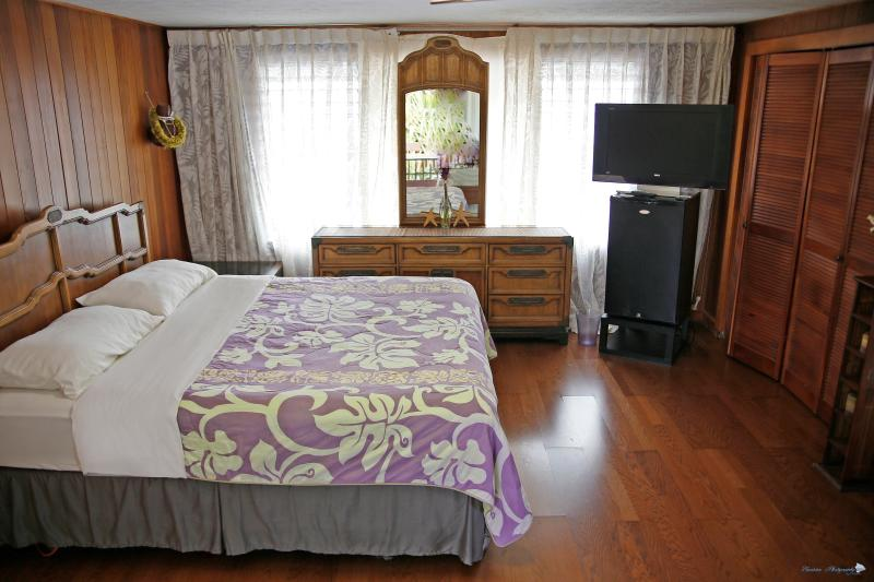 Hilo Town Studio with Wifi, Private Bath & Lanai - Image 1 - Hilo - rentals