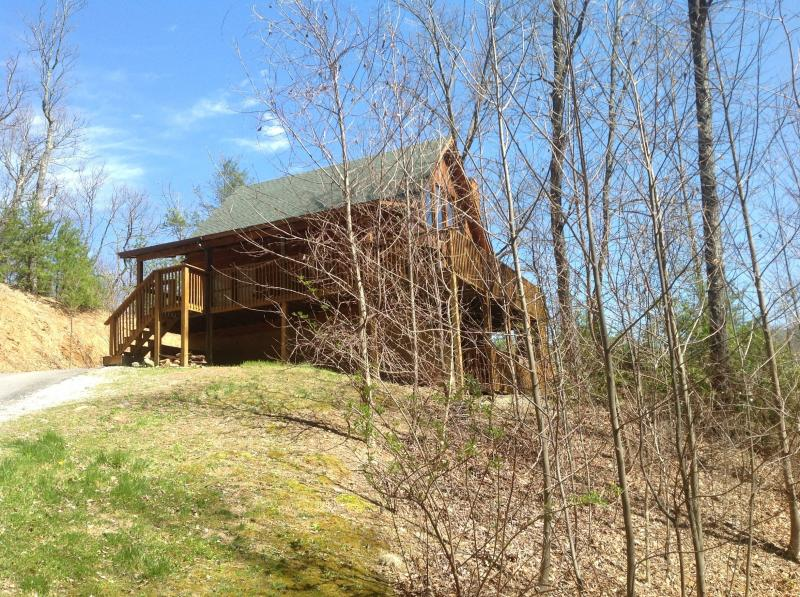 3 bedroom true log cabin complete with bears! - Image 1 - Gatlinburg - rentals