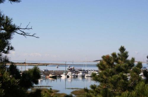 View of Wellfleet Harbor from master brd - Wellfleet Waterfront with Wellfleet Harbor Views - Wellfleet - rentals