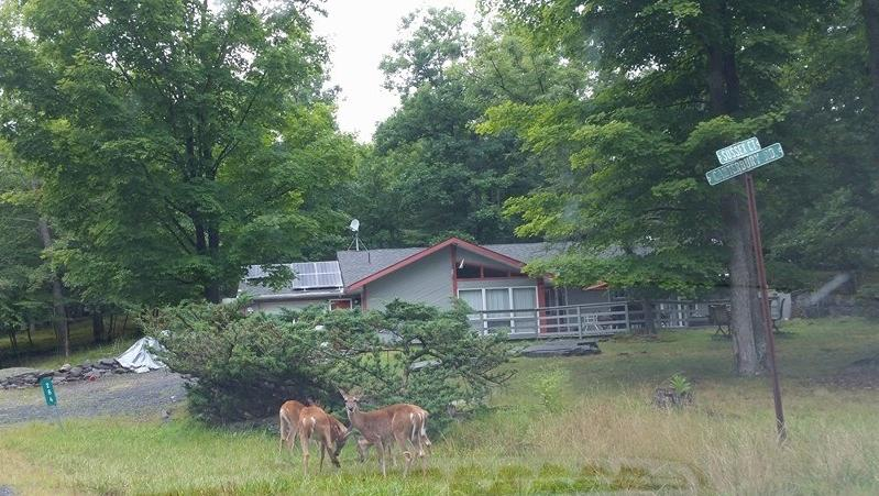Front View,Secluded - Modern Secluded,jaccuzi,wifi,Netflix,Resort Area - Bushkill - rentals