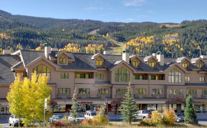Gateway Mountain Lodge in the Keystone Ski Area. Close to lots of activities. - Versatile properties in Keystone Ski Area - Keystone - rentals