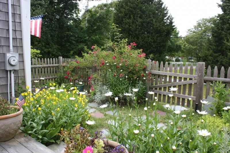 Perrenial Garden in Full Bloom! - Family Friendly, Near Golf, Beach & Center with A/C & Wifi - Harwich Port - rentals