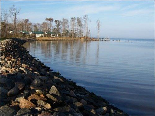 Egret is 1 of 4 cottages on the Point - Egret-A waterfront cottage on the Albemarle Sound - Columbia - rentals