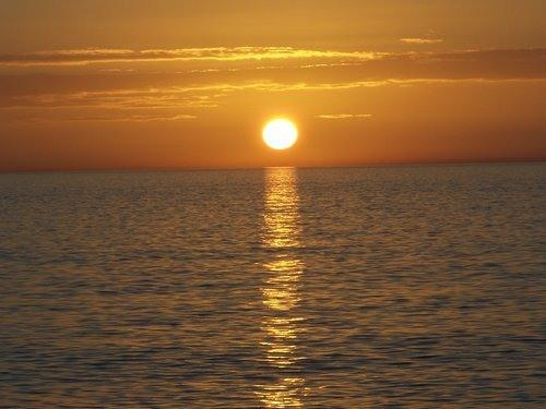 """Sunset at Barefoot Beach, white sand, turtles, dolphins and white sand. - Executive 1st Fl. condo in the """"Forest"""" - Fort Myers - rentals"""