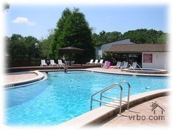 Swimming pool and Spa - Golf Coast Woodland Retreat by Golf & Country Club - Palm Harbor - rentals