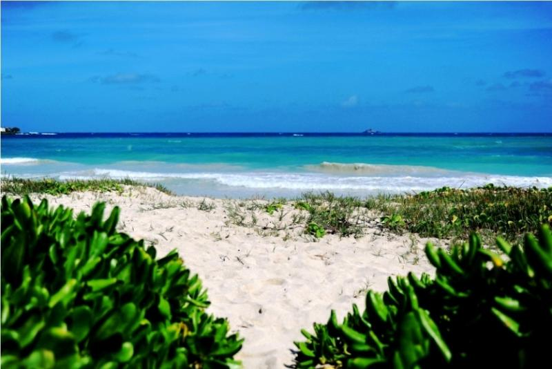 World Renowned Kailua Beach in steps away - Unforgettable Beachfront Oasis - Kailua - rentals