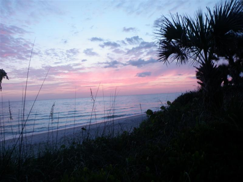 Beach - Manasota Key Bay - Englewood - rentals