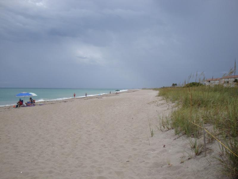 CLEAN Private Beach - Winter Beach Escape on the Treasure Coast of FL! - Fort Pierce - rentals