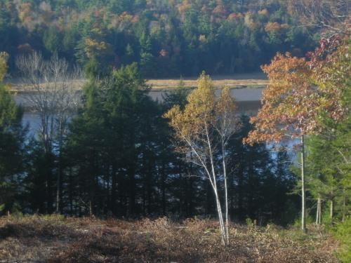 Sweeping river views - Moose Crossing...LUXURY  Home In Mid- coast Maine - Stockton Springs - rentals