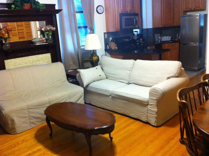 living room fold out sofa bed and futon love seat - manhattan upper west side new apartment - Manhattan - rentals