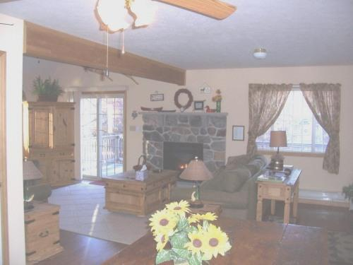 Living Room - Newer Pocono Mountain Chalet - WIFI - Albrightsville - rentals