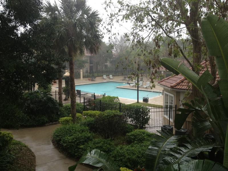 pool view - 2/2 Condo wPool View - Minutes to Siesta Key Beach - Sarasota - rentals
