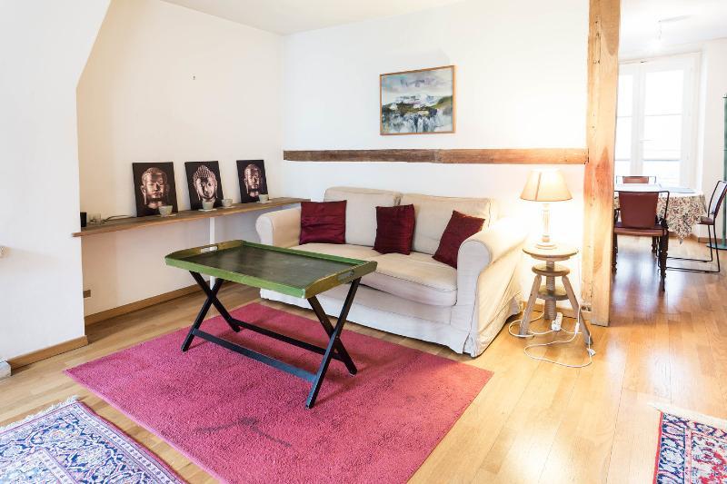 Living Room - Spacious, Bright Apartment Rental in Paris - Paris - rentals