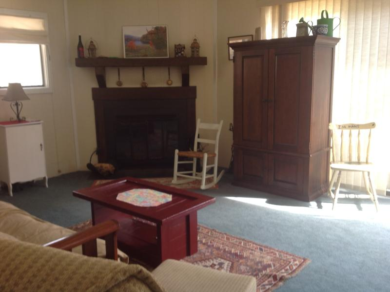 Livingroom with cozy fireplace - Romantic Retreat; Family Getaway pet friendly! - Orkney Springs - rentals