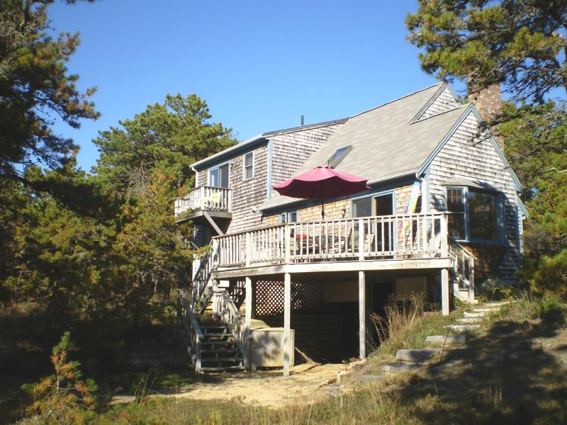 Exterior View - Wellfleet:  3 Bedroom Contemporary Cape - Wellfleet - rentals