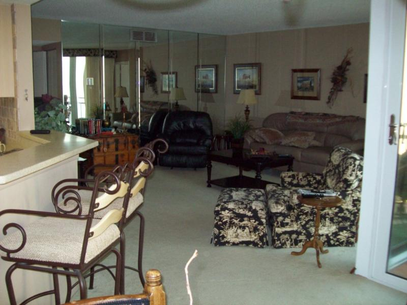 Living Room - Beautiful updated condo overlooking Tampa Bay - Saint Petersburg - rentals