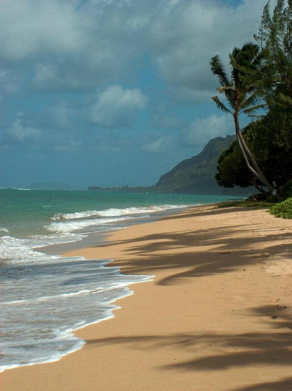 Beach in front of my condos! - Hawaii Beachfront Vacation Rentals - Punaluu - rentals