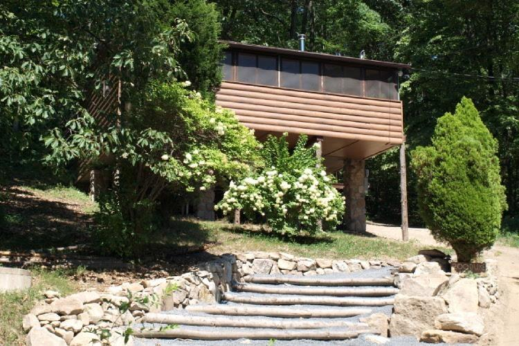 Cabin with trees as the foundation. - Pocono Mountain View Cabin - Kunkletown - rentals