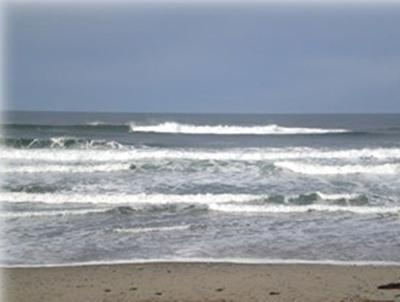 Wonderful Beachview - Seahawk  Ocean Front Condo - Lincoln City - rentals