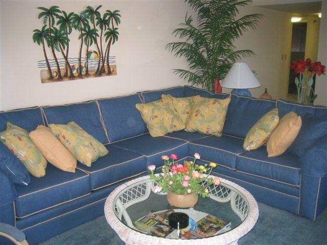 Spacious Living Room - Awesome View & Beachy, Too! Regency Place, OCMD - Ocean City - rentals