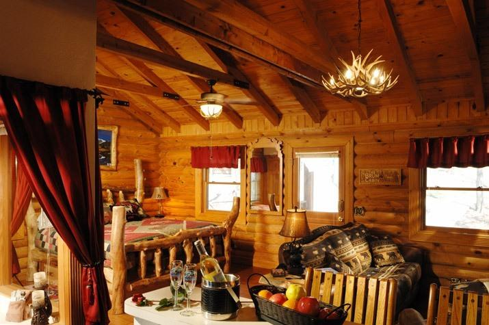 1BR/BA Log Cabin: Perfect Spot for Couples! - Image 1 - Branson - rentals