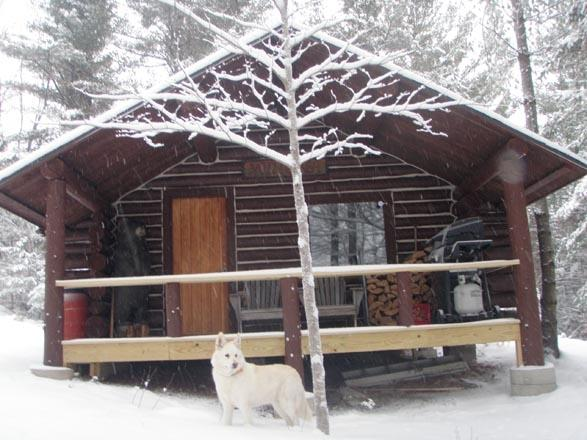 Let it snow! You\'re all snuggled in by the fire sipping hot cocoa! - Secluded Rustic Log Cabin-HUGE mountain views! - Andover - rentals
