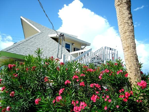 Unique Loft Style Apartment by The Sea! - Image 1 - Fort Myers Beach - rentals