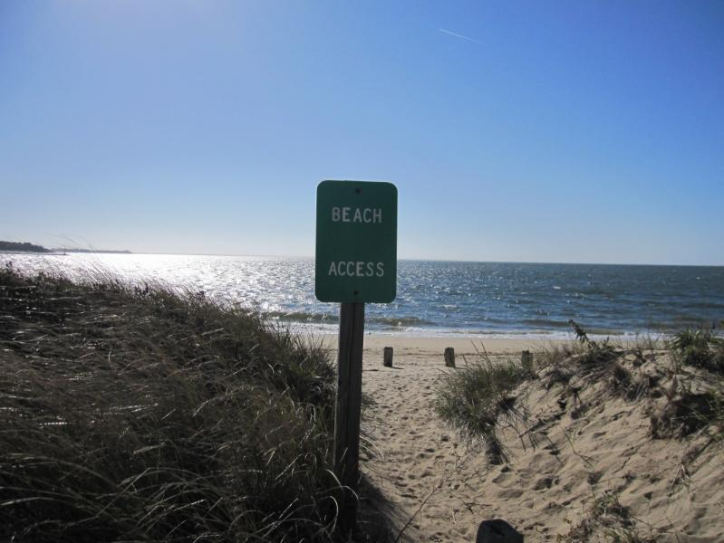 20 steps to the beach - 20 steps to the beach - Wellfleet - rentals