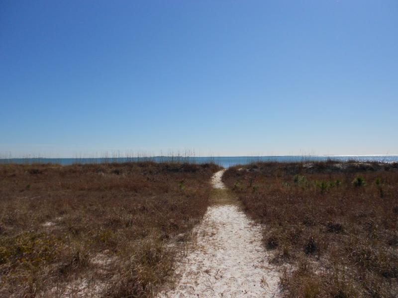 Private path to beach - At home ON THE BEACH! - Carrabelle - rentals