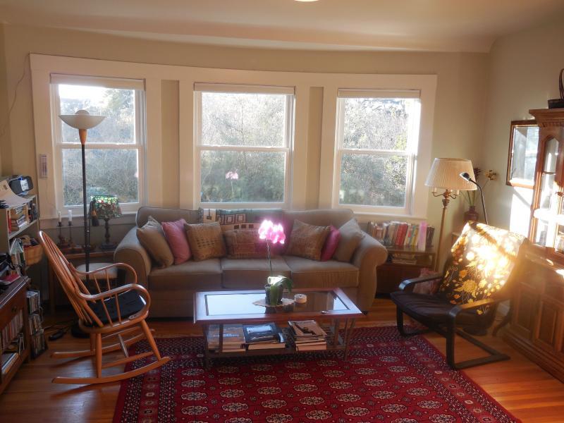 A luminous living room that looks onto the greenery of the Presidio - Presidio Paradise in San Francisco! - San Francisco - rentals