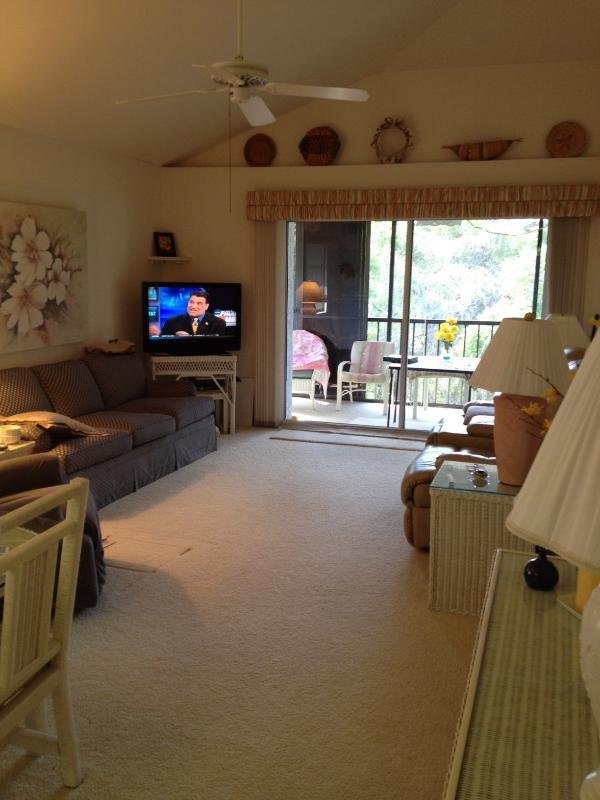 Condo, 2 bedroom, 2 bath in friendly adult complex - Image 1 - Englewood - rentals