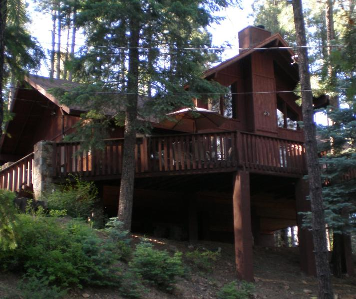 The Tree House - THE TREE HOUSE - Prescott - rentals