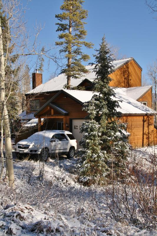The Bear's Den - SLEEPS 8 WITH GARAGE AND PRIVATE HOT TUB! - Wildernest - rentals