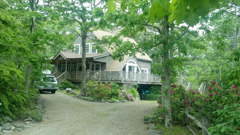 well situated, charming edgartown home - Image 1 - Edgartown - rentals