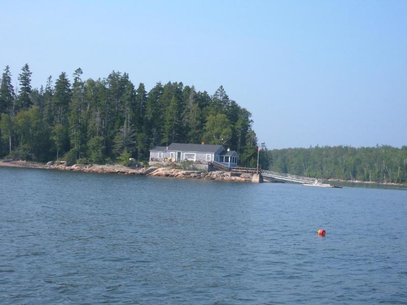 Pristine oceanfront cottage - Image 1 - Milbridge - rentals