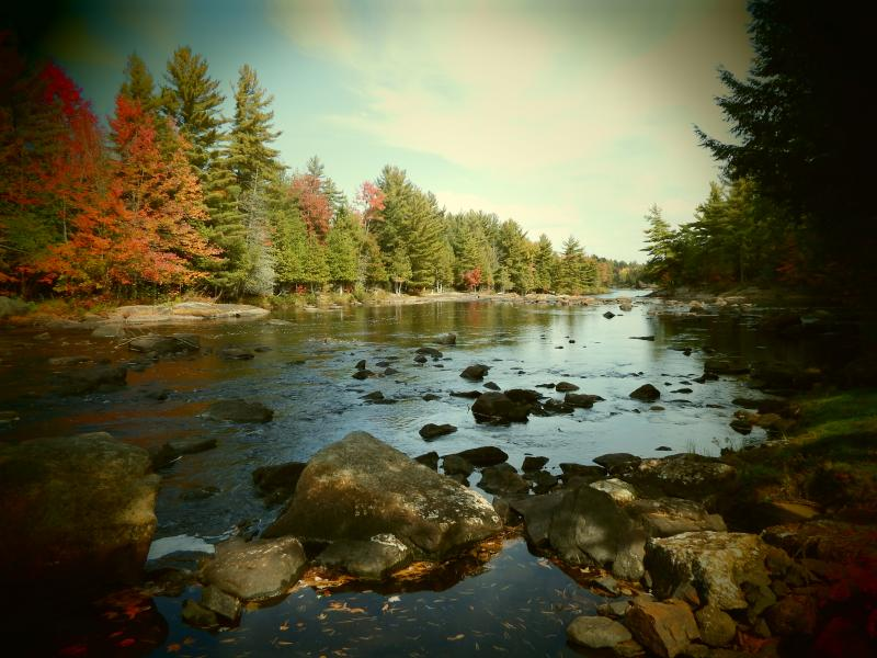 River at Cabin - Adirondack Riverfront Cabin - Harrisville - rentals