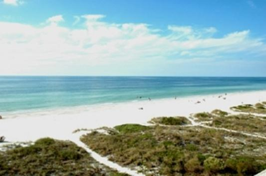Ocean Side 402 - Image 1 - Indian Rocks Beach - rentals