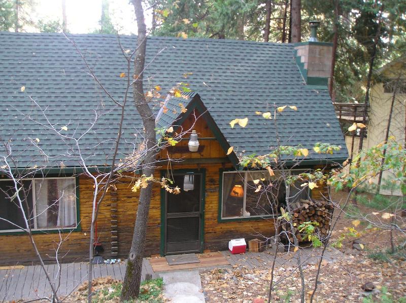 Cute & Cozy Cabin Street View - Cozy & Cute Ski & Lake Mountain Cabin - Mi Wuk Village - rentals