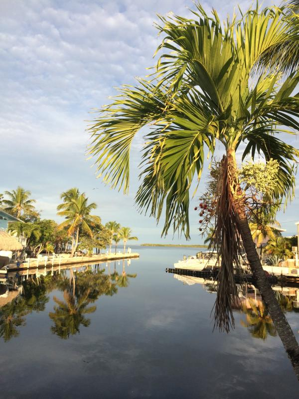 Priceless view - 160ft dock, 2 masters beds and fish off the dock! - Key Largo - rentals