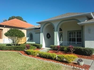 WALK/BIKE TO HOWARD BEACH/PARK!  HEATED JACUZZI! - Image 1 - Tarpon Springs - rentals