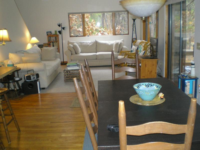 Living and eating area communal area, surrounded by pine trees - Contemporary 4  Bedrm Wellfleet Cape Cod - Wellfleet - rentals