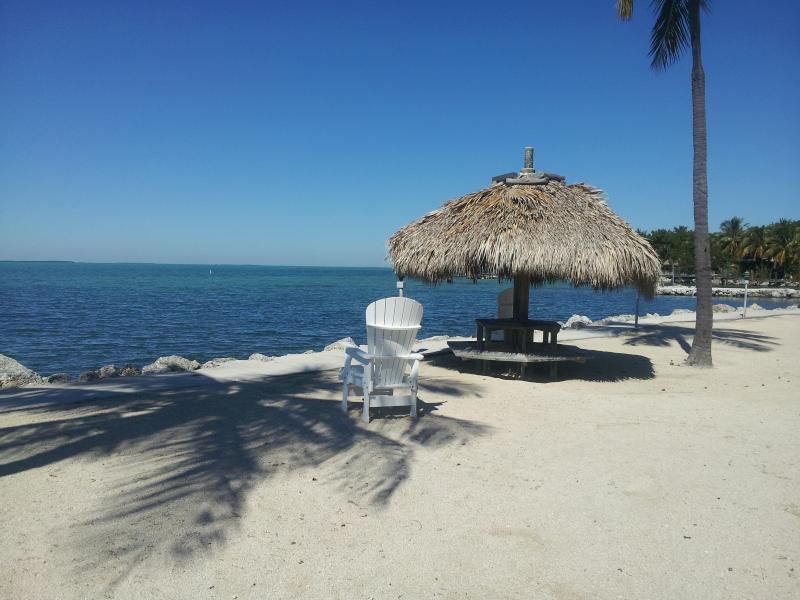 Beach - Futura Yacht Club Bayside Condo and Marina Dockage - Islamorada - rentals