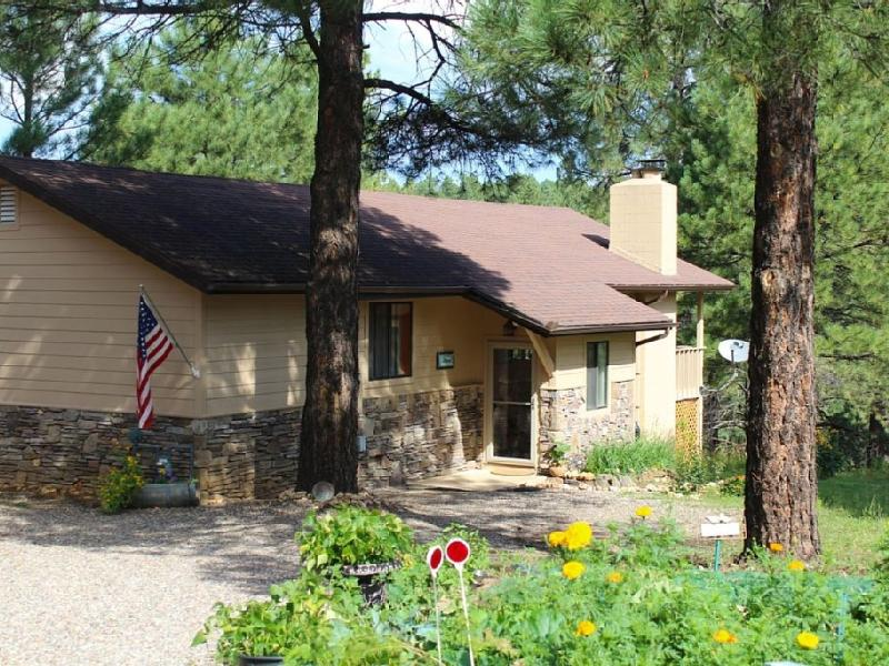 Welcome to the Tree House! - Mountain Retreat (Spa, Pool Table) - Flagstaff - rentals