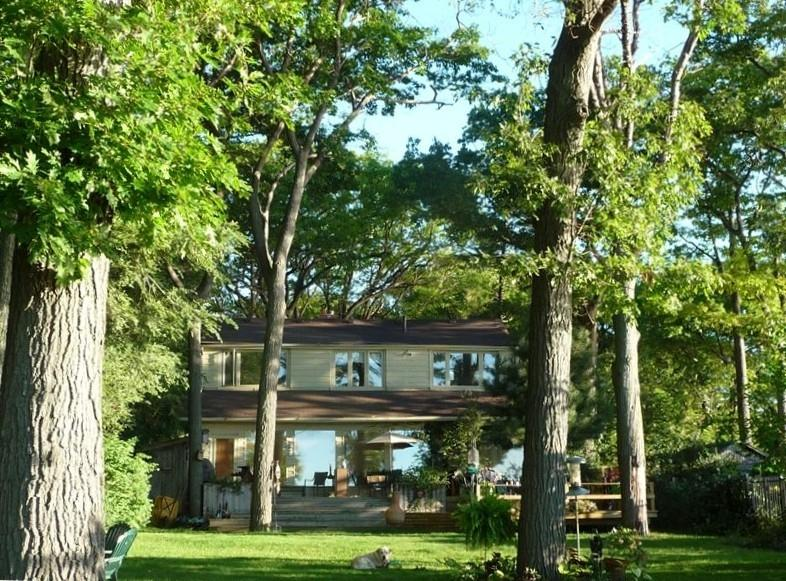 backyard... - Stay at Magicland overlooking Lake Ontario - Toronto - rentals