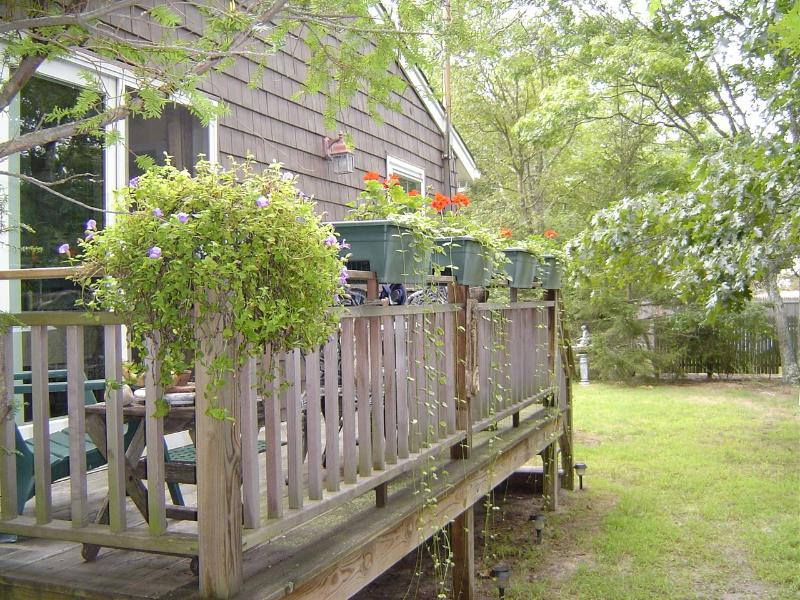 private deck and entrance - Cozy, Wooded, Beachy, Charming  and Immaculate - Hampton Bays - rentals