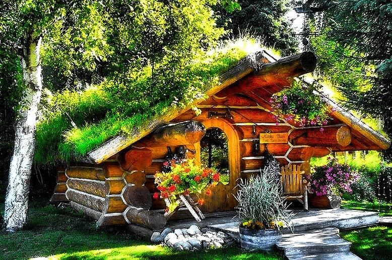 Alaska Hobbit Cabin - Image 1 - Talkeetna - rentals