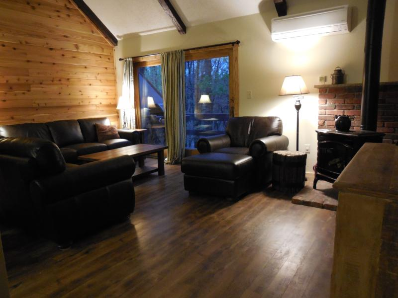 Living room - ski-on/ski-off camelback mountain,paintball,casino - Tannersville - rentals