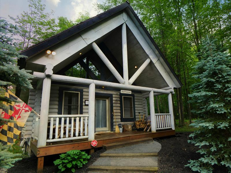 The Whitetail - The Perfect Deep Creek Lake Cabin! - The Whitetail-3rd Night FREE! - Oakland - rentals